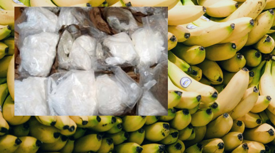 Bags of cocaine hidden among boxed bunches of bananas